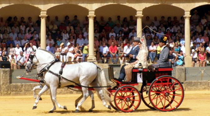 """Las Enganches"" Horse and Carriage Show – Goyesca Ronda"