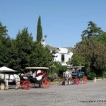 Horses and Carriages in Ronda