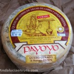 Payoyo Goat Cheese