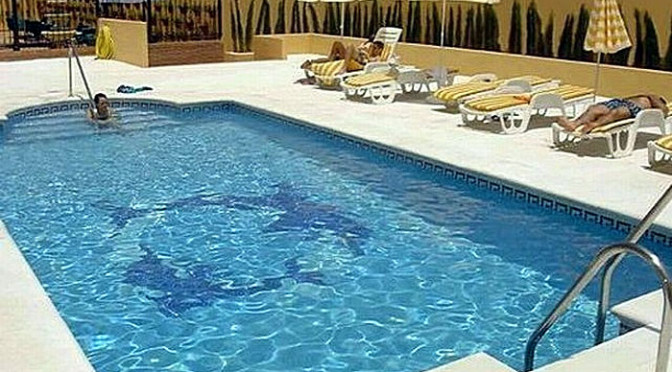 EL Faro Inn, Marbella ***